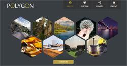 Сайт на една страница polygon