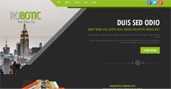 Сайт на една страница robotic