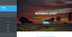 Сайт на една страница sonic